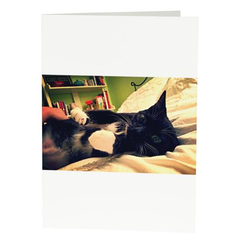 Custom photo ecards free open me horizontal blank frame m4hsunfo